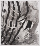 http://pareesapourian.com/files/gimgs/th-6_charcoal-ribbons.jpg